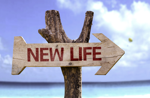 Timber-signpost-pointing-in-direction-of-new-life